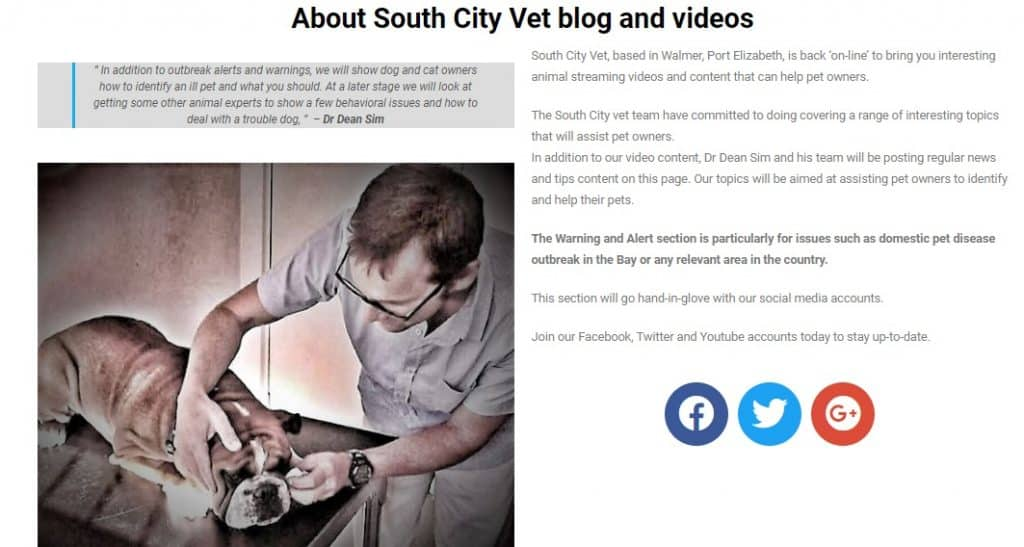 South City vet Blog and tips